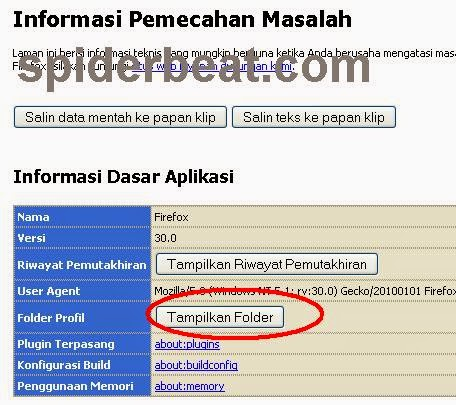 cara backup bookmark, sandi tersimpan, password firefox 3