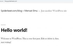Cara install wordpress nginx debian 9 final